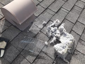 dirty dryer vent, dryer vent cleaning port st. lucie